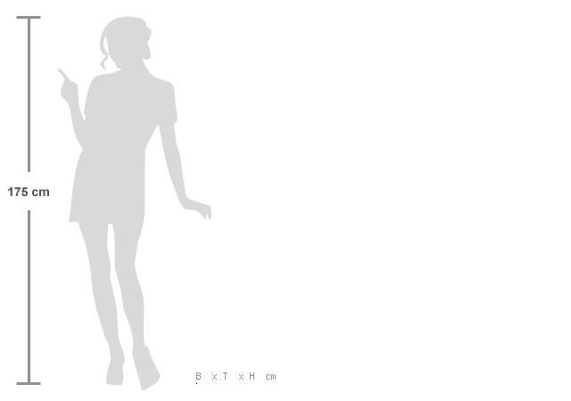 Größenverhältnis Zwischen Mensch / Wippe