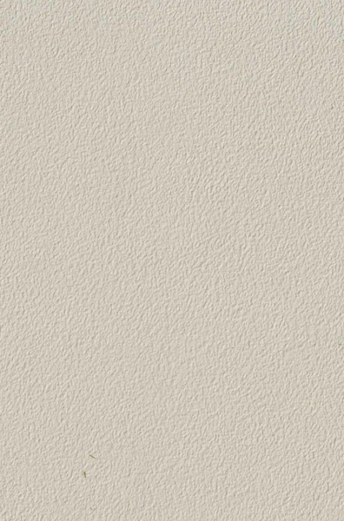 gartenstuhl niehoff ned sessel kunstleder beige stapelsessel edelstahl gartenm bel fachhandel. Black Bedroom Furniture Sets. Home Design Ideas